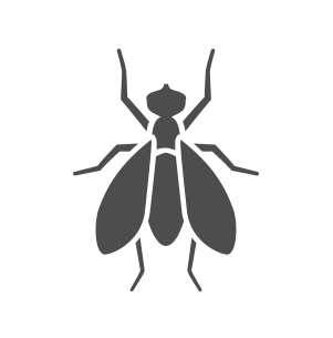 603 Pest NH pest control fly icon