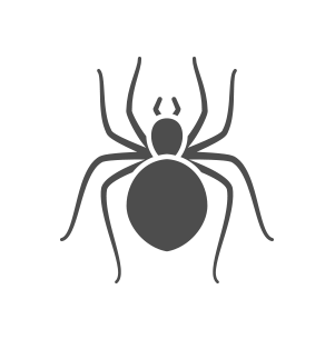 603 Pest spider icon