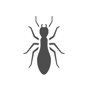 603 Pest NH pest control termite icon 2