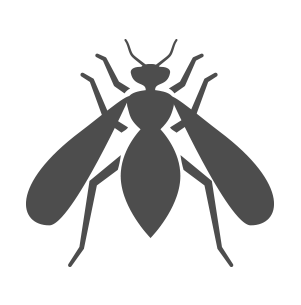 603 Pest wasp icon